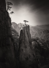 Homage to Huangshan - Study 1