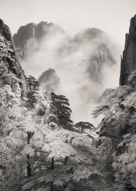 Homage to Huangshan - Study 2