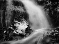 Skull And Waterfall
