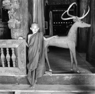 Young Monk with Deer